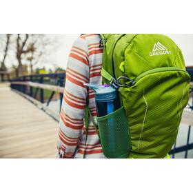 Gregory Nano 16 Backpack mantis green